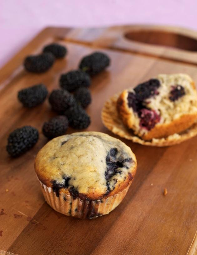 blackberry muffins 7